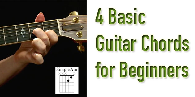 The Principles of Correct Practice for Guitar The Perfect
