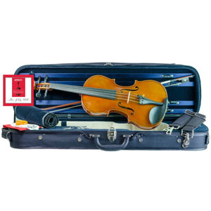 Nikola Zubak violin