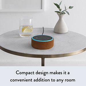 echo dot design