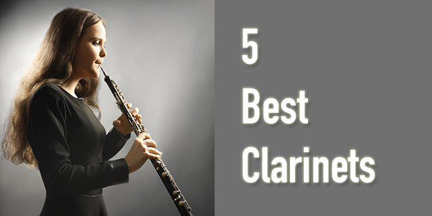 Best Clarinet For Beginners Top 5 Reviews This Year